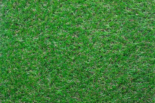 Vue de dessus fond d'herbe verte.