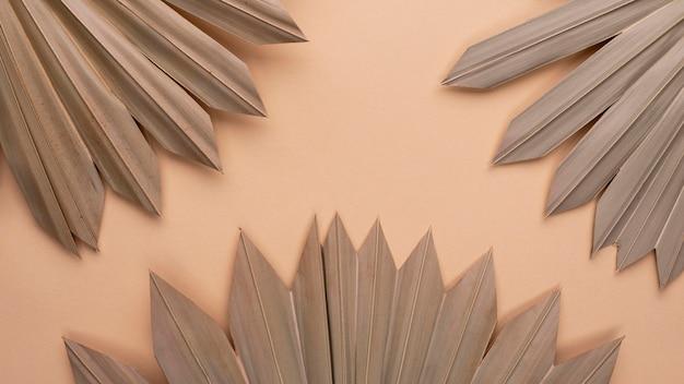 Vue de dessus des formes de papier monochromes