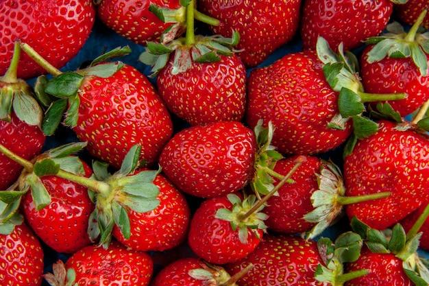 Vue de dessus des fraises rouges sur fond bleu