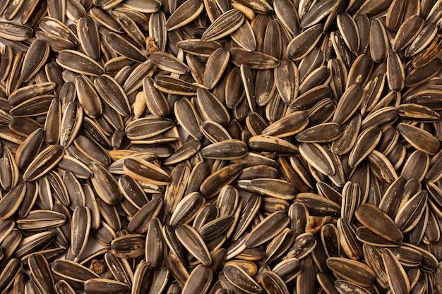 Vue de dessus des graines de tournesol à plat