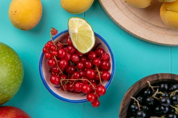 Vue de dessus des groseilles rouges et noires dans un bol avec des abricots sur une surface bleue
