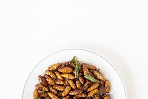 Vue de dessus des insectes frits dans un plat sur fond blanc. espace de copie