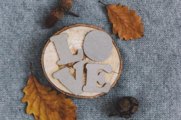 Vue de dessus lettres amour sur une coupe transversale d'arbre tricoté fond ana feuilles d'automne