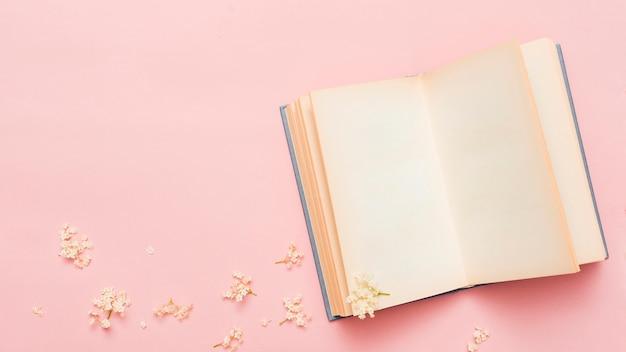 Vue de dessus d'un livre ouvert