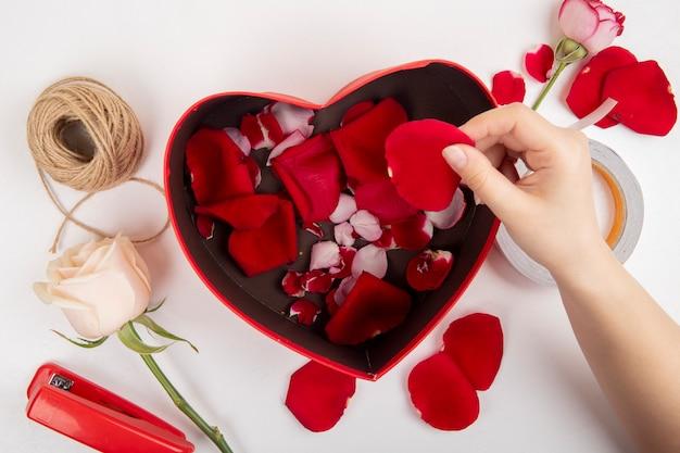 Vue de dessus de la main féminine mettant des pétales de rose rouge dans une boîte-cadeau en forme de coeur et une agrafeuse rose de couleur blanche et une corde sur fond blanc