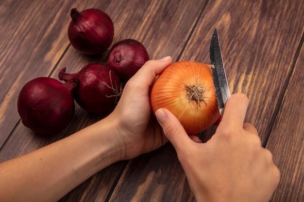 Vue de dessus des mains féminines couper un oignon jaune avec un couteau avec des oignons rouges isolé sur un mur en bois