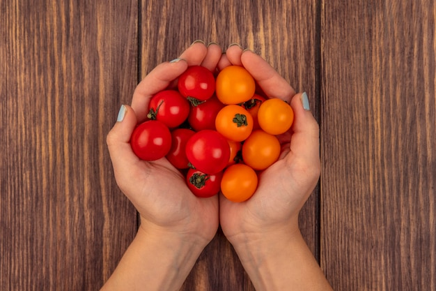 Vue de dessus des mains féminines tenant des tomates fraîches cerise rouge et orange sur une surface en bois