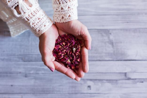 Vue de dessus des mains de femme tenant des feuilles de roses séchées. fond de table en bois gris. concept de mode de vie diurne et sain