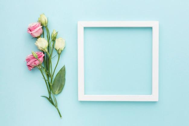 Vue de dessus mini roses avec cadre