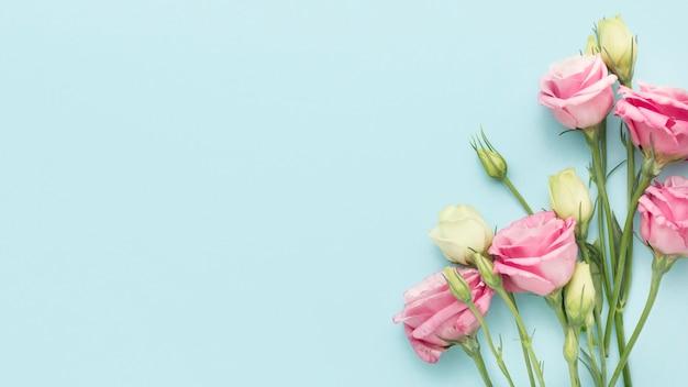 Vue de dessus mini roses avec espace copie