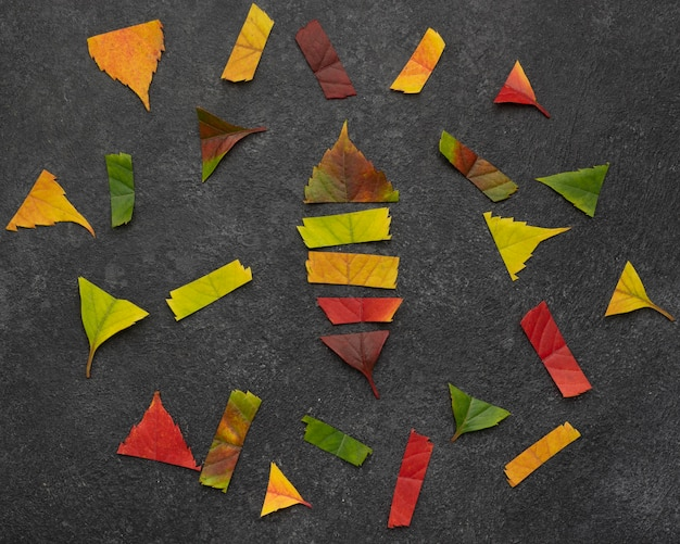 Vue de dessus des morceaux de feuilles d'automne