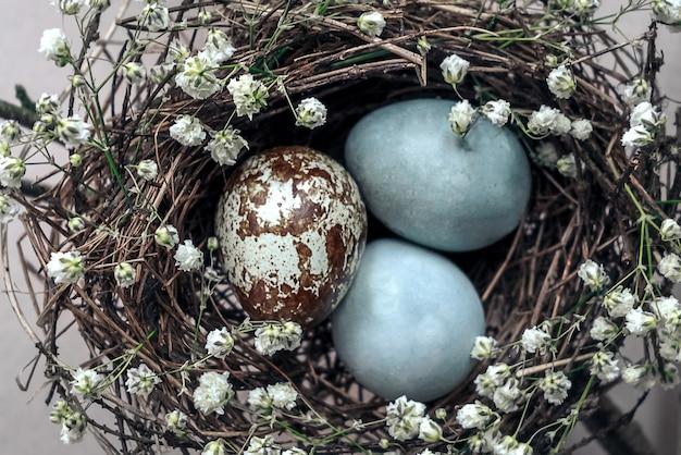 Vue de dessus sur le nid d'oiseau avec trois œufs tachetés colorés décorés de fleurs blanches.