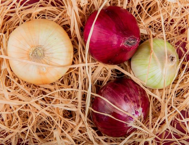 Vue de dessus des oignons doux, rouges et blancs sur la surface de la paille