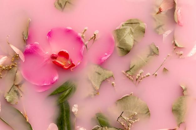Vue de dessus des orchidées et des roses dans de l'eau colorée rose