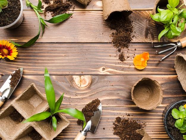 Vue de dessus des outils de jardinage et des plantes