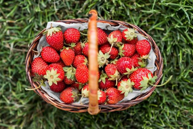 Vue de dessus panier de fraises savoureux