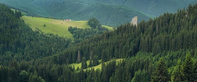 Vue de dessus panoramique de la journée pittoresque des collines de la montagne verte et de la scène magnifique