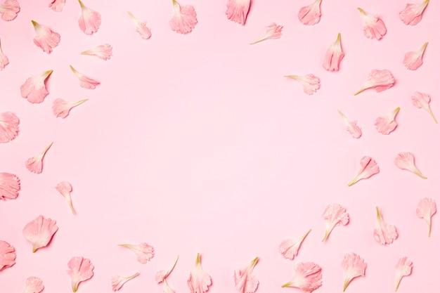 Vue de dessus des pétales sur fond rose