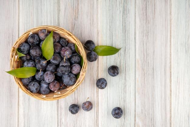 Vue de dessus de la petite prunelle bleu-noir aigre sur un seau avec des feuilles sur un fond gris avec copie espace jpg