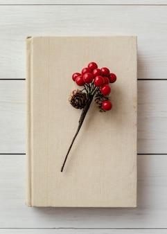 Vue de dessus plante sur arrangement de livre