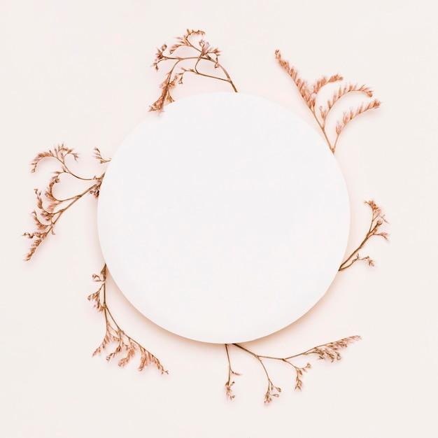 Vue de dessus des plantes d'automne avec cercle de papier