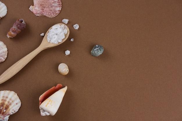 Vue de dessus plat poser la cuillère à sel de mer et coquillages marron fond espace copie