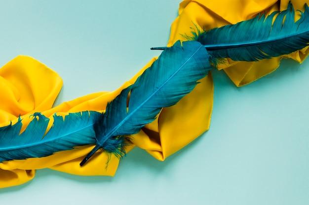 Vue de dessus des plumes pour le carnaval sur tissu