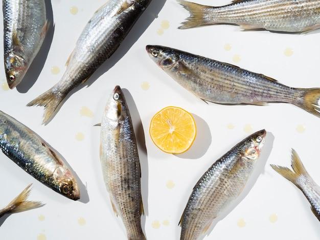 Vue de dessus des poissons crus avec un citron