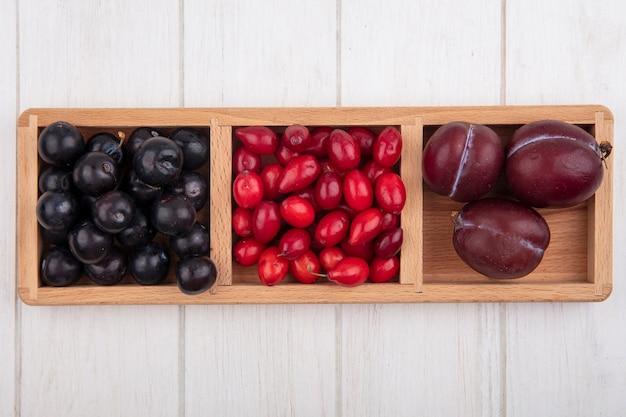 Vue de dessus prune avec cornouiller et cerise douce sur un support sur fond blanc