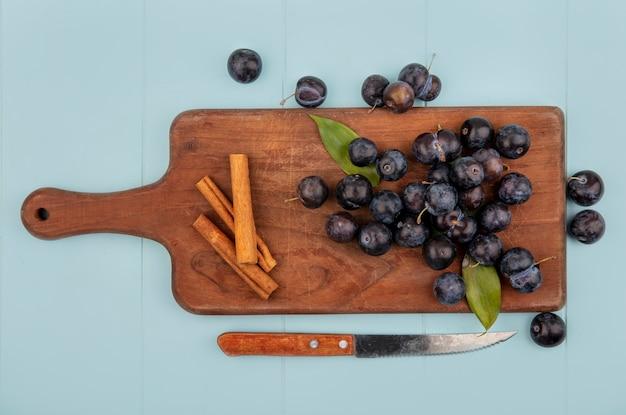 Vue de dessus de prunelles aigre violet foncé sur une planche de cuisine en bois avec des bâtons de cannelle avec un couteau sur un fond bleu