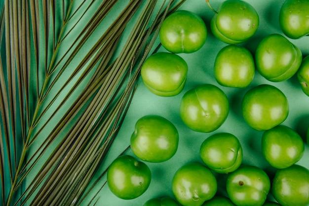 Vue de dessus des prunes vertes avec feuille de palmier sur table verte