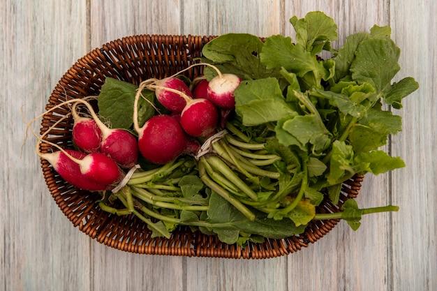 Vue de dessus des radis frais sur un seau avec des feuilles sur un fond en bois gris