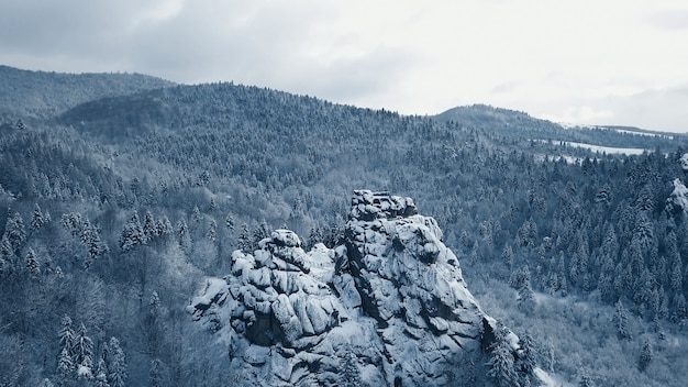 Vue de dessus de la rivière de la forêt en hiver. le concept de tourisme d'hiver.