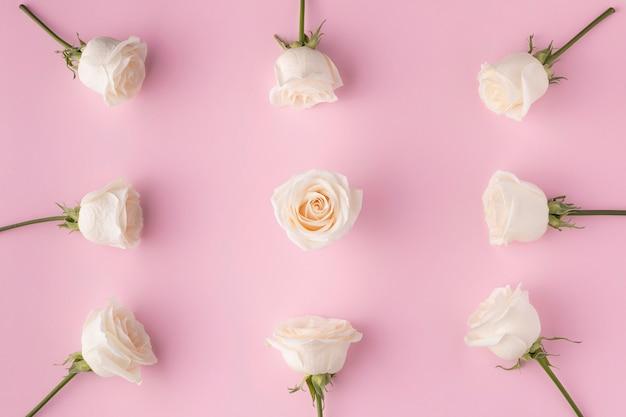 Vue de dessus des roses en fleurs