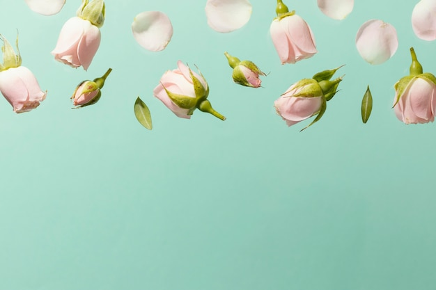Vue de dessus des roses de printemps rose avec espace copie