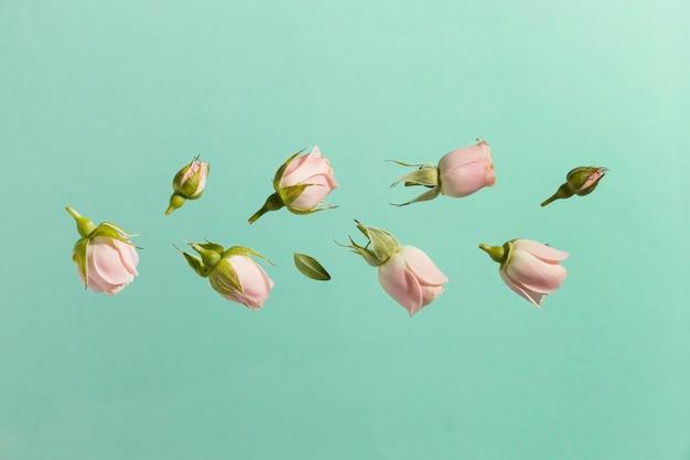 Vue de dessus des roses de printemps