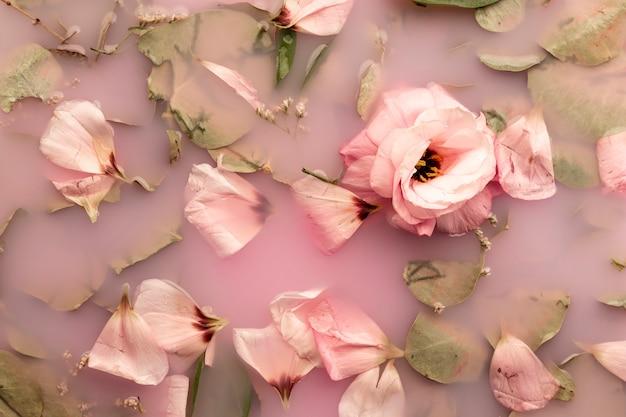 Vue de dessus des roses roses dans l'eau rose