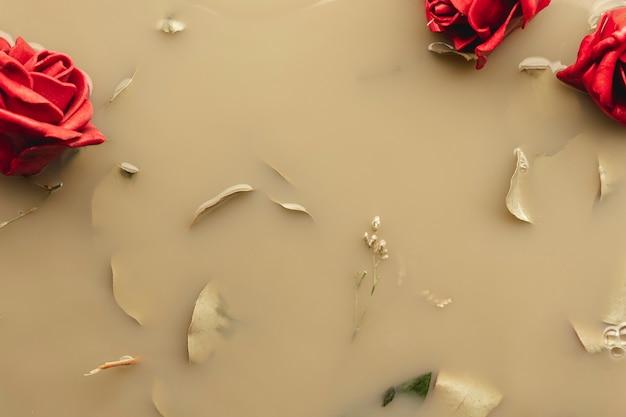 Vue de dessus roses rouges et pétales dans l'eau brune