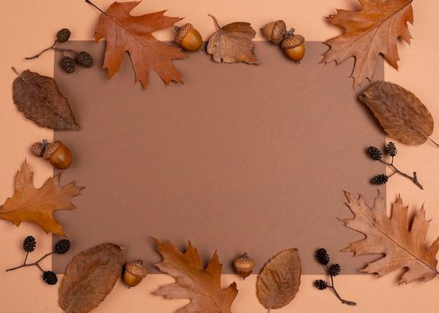 Vue de dessus de la sélection monochromatique du cadre de feuilles