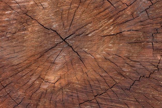 Vue de dessus de la texture en bois