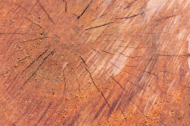 Vue de dessus de la texture du bois