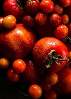 Vue de dessus des tomates d'automne