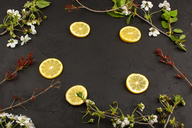 Vue de dessus des tranches de citron aigre moelleux juteux autour de fleurs blanches sur le sol sombre