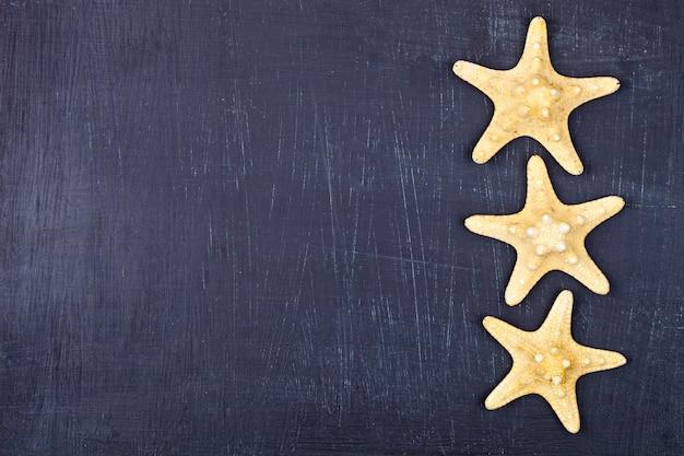 Vue de dessus de trois étoiles de mer sur fond noir.