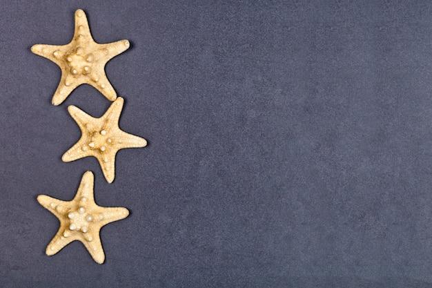 Vue de dessus de trois étoiles de mer