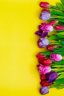 Vue de dessus des tulipes de printemps sur la surface jaune