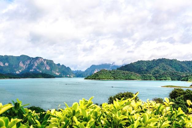 Vue de dessus sur la vaste nature avec mer et paysage