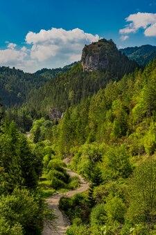 Vue à distance sur le ravna stena (plat rock) de la montagne tara en serbie à l'été