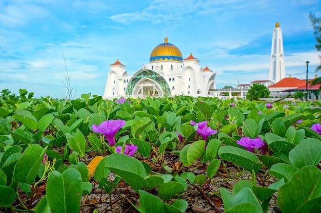 Vue du matin à la mosquée du détroit de malacca (masjid selat melaka), c'est une mosquée située sur l'île artificielle de malacca près de la ville de malacca, malaisie