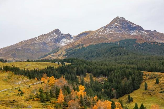 Vue du paysage montagne dans la nature et l'environnement en suisse